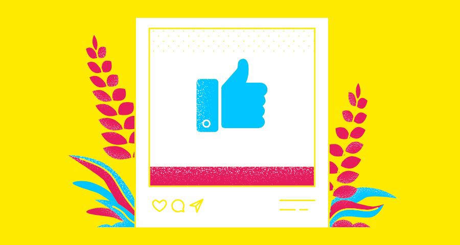 Instagram lanza guias para creadores y usuarios